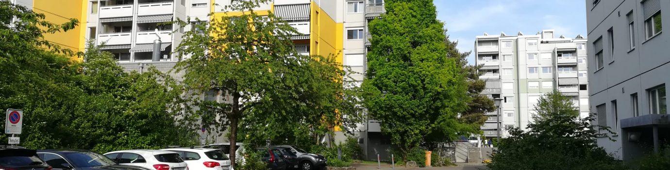 Porträt Wohnüberbauung Müllerwis Greifensee